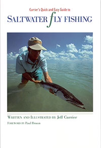 currier-saltwater-book