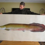 jeff-currier-arapaima