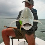 Jack Crevalle, Florida Keys