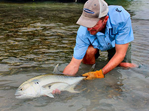 jeff-currier-fly-fishing-for-jack-crevalle