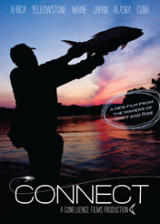 connect_dvd_cover_new