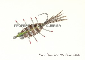 del_brown_merkin_crab_large
