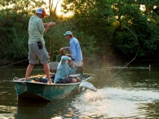 Jeff-Currier-fly-fishing-tigerfish