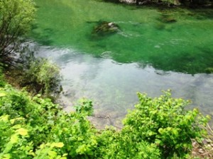 blog-June-1-2013-5-Idrijca-River