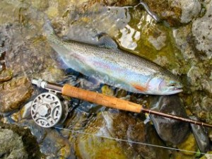 blog-June-7-2013-3-Rainbow-on-the-Nadiza-River-Slovenia