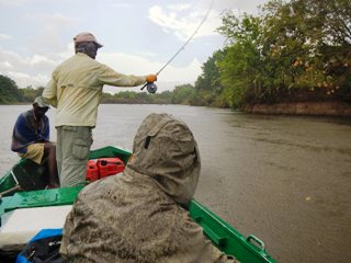 blog-Nov-11-2013-6-flyfishing-for-tigerfish