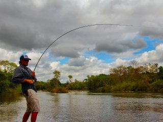 blog-Nov-12-2013-12-flyfishing-for-vundu