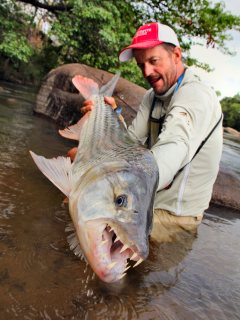 blog-Nov-12-2013-7-Jeff-Currier-tigerfish