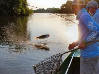 blog-Nov-9-2013-3-flyfishing-for-tigerfish