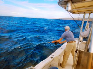 blog-Dec-12-2013-5-flyfishing-for-marlin