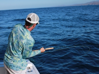blog-Dec-14-2013-1-Jeff-Currier-flyfishing-for-mahi-mahi