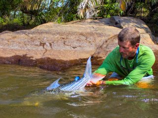 blog-Nov-16-2013-10-jeff-currier-releasing-tigerfish