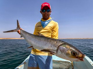 blog-March-29-2014-7-mark-murray-fly-fishing-for-milkfish