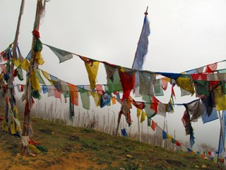 blog-May-19-2014-2-prayer-flags-in-bhutan