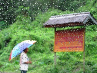 blog-May-28-2014-2-monsoon-season-in-bhutan