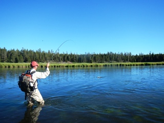 blog-July-1-2014-1-flyfishing-the-henrys-fork