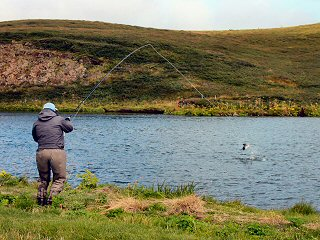 blog-Aug-11-2014-5-icelandic-fly-fishermen-and-jeff-currier