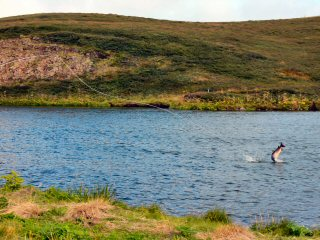 blog-Aug-11-2014-7-atlantic-salmon-fsihing-in-iceland