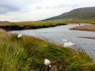 blog-Aug-8-2014-9-icelandic-flyfishermen