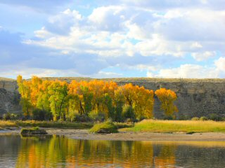 blog-Sept-16-2014-2-fall-in-idaho