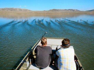 blog-Sept-20-2014-15-flyfishing-for-carp