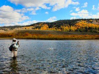 blog-Sept-23-2014-4-flyfishing-with-steve-berry