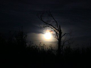 blog-Sept-9-2014-4-full-moon