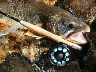 blog-Oct-22-2014-2-flyfishing-for-mackinaw