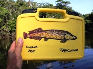 blog-Nov-1-2014-1-flyfishing-in-guyana