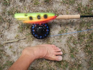 blog-Nov-1-2014-8-warpath-flies-for-arapaima