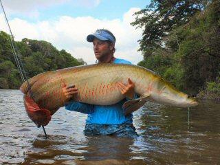 blog-Nov-4-2014-11-tim-brune-flyfishing-for-arapaima