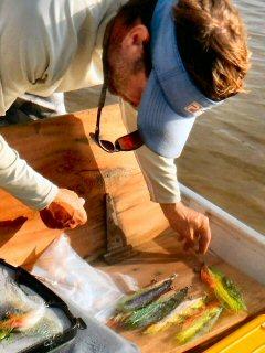 blog-Nov-4-2014-7-tim-brune-flyfishing-for-arapaima