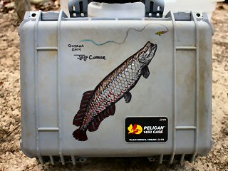 blog-Nov-7-2014-9-jeff-currier-arapaima-artwork