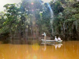 blog-Nov-8-2014-6-flyfishing-in-guyana