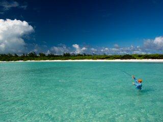 blog-Dec-11-2014-10-flyfising-the-seychelles