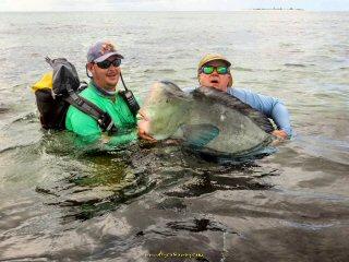 blog-Dec-11-2014-6-bumphead-parrotfish
