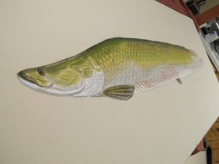 blog-Dec-29-2014-3-arapaima-fish-art