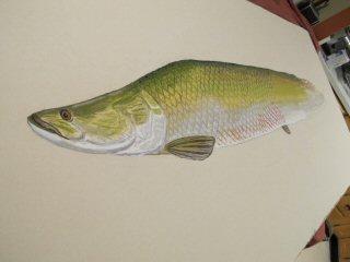 blog-Dec-29-2014-3-arapaima-fish-art