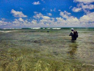 blog-Dec-5-2014-10-jeff-currier-flyfishing-farquhar