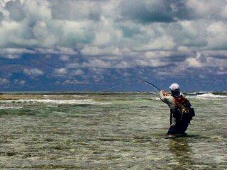 blog-Dec-5-2014-11a-jeff-currier-flyfishing-the-seychelles