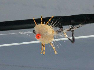 blog-Dec-5-2014-8-crab-fly-pattern