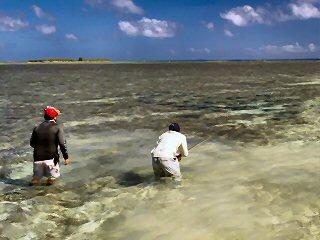 blog-Dec-5-2014-9-flyfishing-for-bumphead-parrotfish