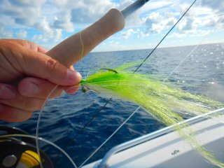 blog-Dec-6-2014-13-flyfishing-for-dogtooth-tuna