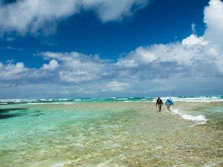 blog-Dec-6-2014-4-flyfishing-in-the-seychelles