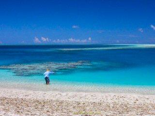 blog-Dec-7-2014-1-flyfishing-farquhar