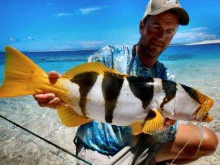 blog-Dec-7-2014-5-jeff-currier-saddleback-grouper
