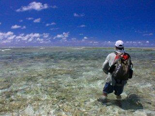 blog-Dec-8-2014-11-jeff-currier-flyfishing-on-farquhar