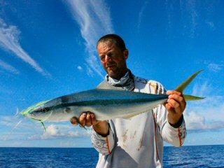 blog-Dec-9-2014-14-jeff-currier-flyfishing-for-rainbow-runner