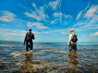 blog-Dec-9-2014-2-flyfishing-in-farquhar