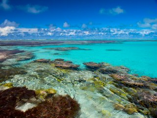 blog-Dec-9-2014-4-flyfishing-the-seychelles